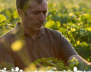 Alain Legret, vigneron indépendant