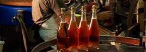 Bouteilles en préparation Champagne Legret & Fils