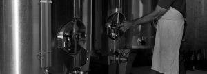Cuvée champagne Équilibre : assemblage de cépages